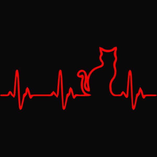Heart Beats Cat New Era Snapback Cap (Embroidered) | Hatsline com