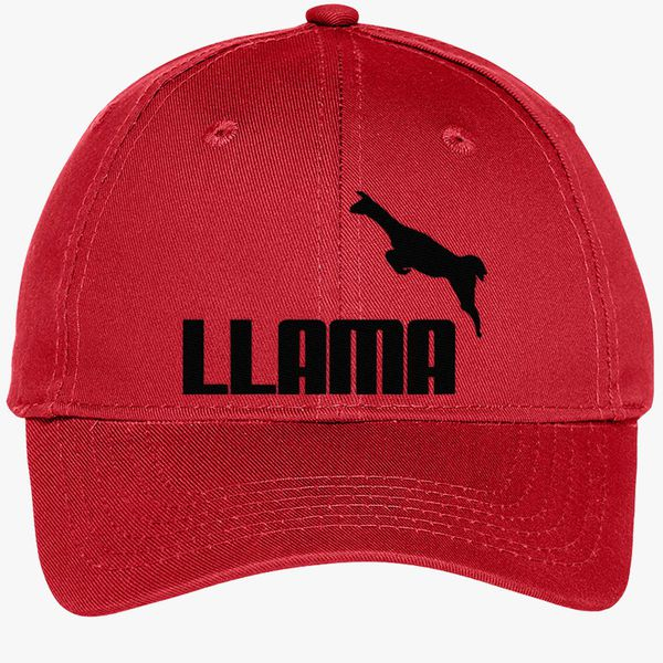 8396b373e813c Llama Youth Six-Panel Twill Cap - Embroidery +more